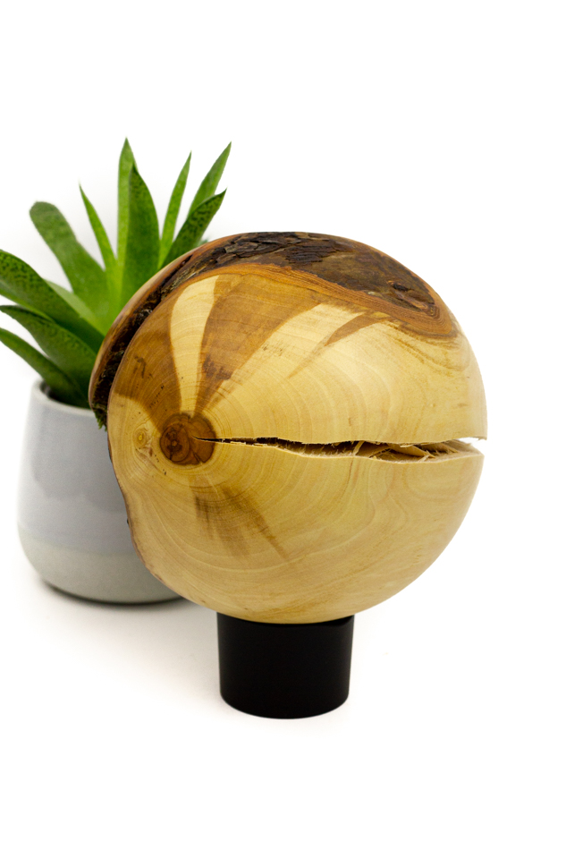 Kugel Apfelbaum (Astgabel)