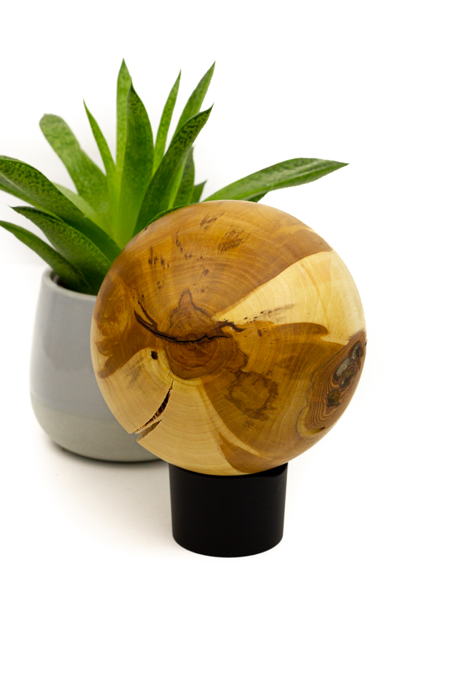Kugel Apfelbaum