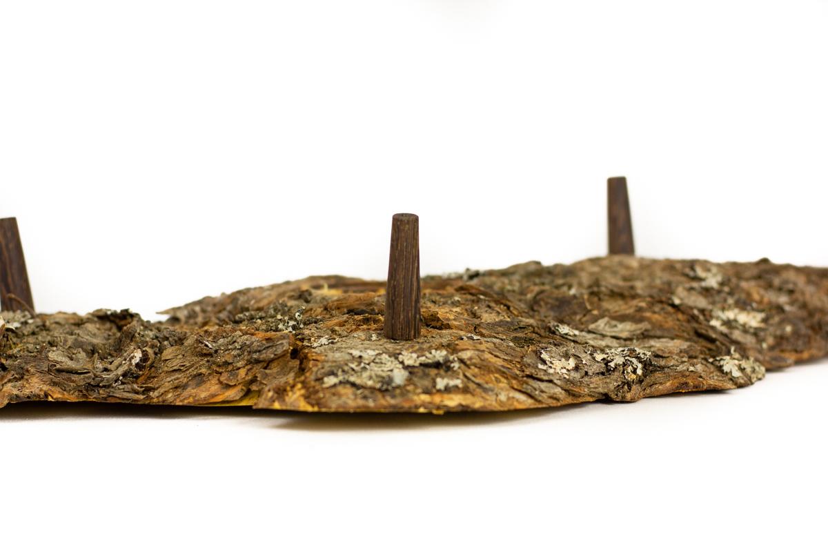Erhöhter Silberahorn Maserteller mit Standfüßen aus Wenge
